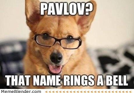 pavlov-that-name-rings-a-bell