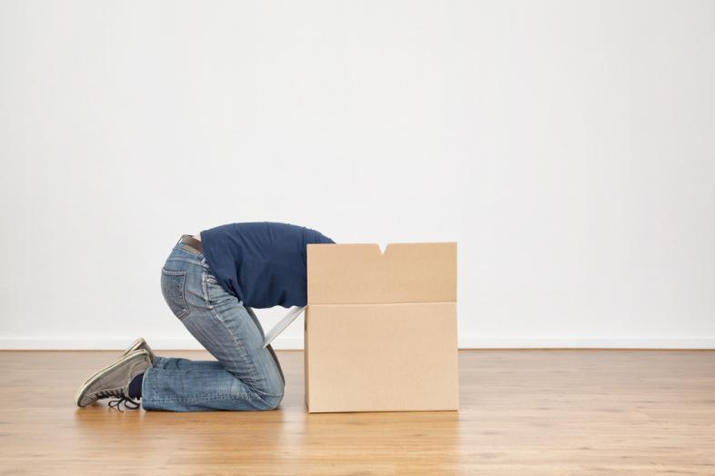 shame in box